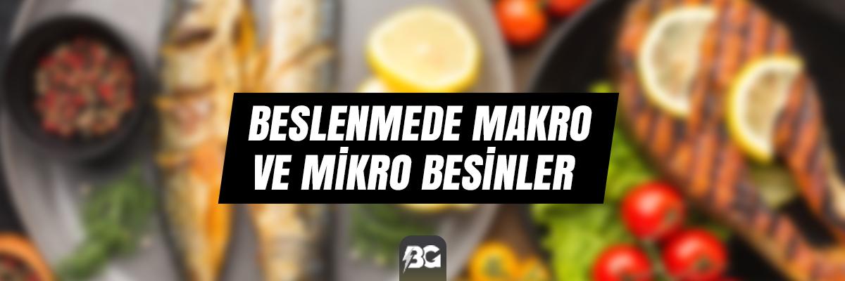 BESLENMEDE MAKRO VE MİKRO BESİNLER